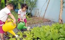 Lợi ích của việc giáo dục kỹ năng sống cho trẻ mầm non