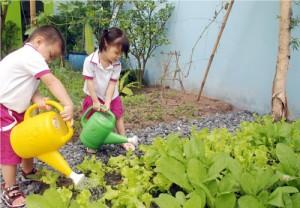 giáo dục kỹ năng sống cho trẻ mầm non